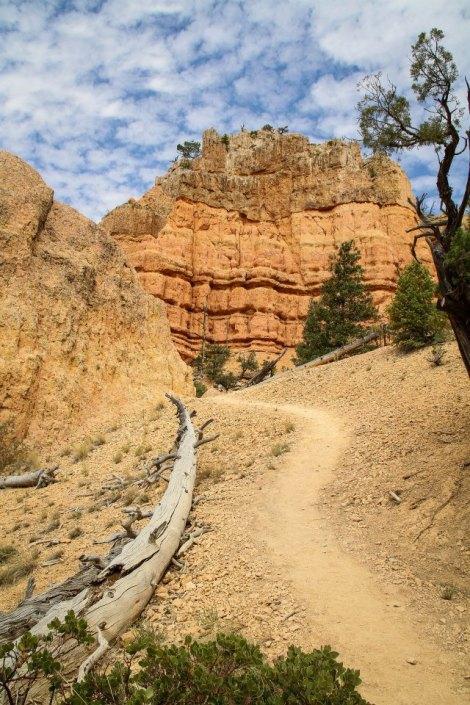 Red Canyon - Utah
